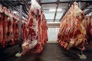 The Netherlands / Germany - Slaughterhouses image